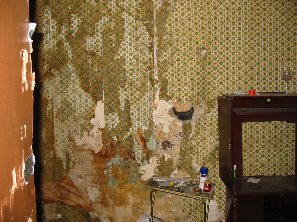 mold_water-damage-wall